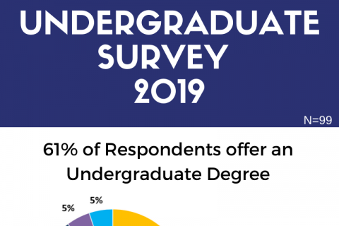 Undergraduate Survey Results